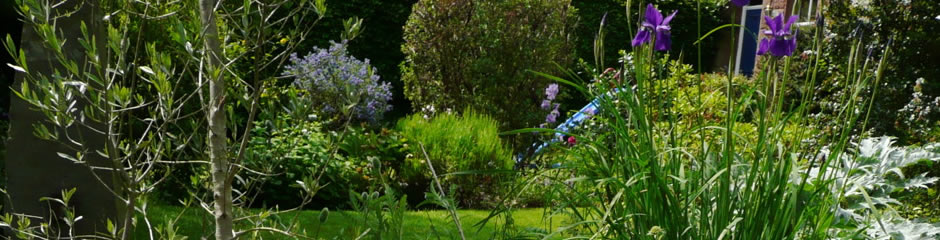 Garden and Landscape Maintenance Services in Kendal