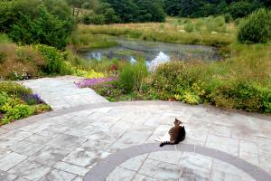 Local stone paving and pond side planting