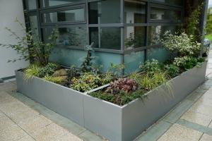 The large contemporary planters create a focal point in the paved courtyard & bl