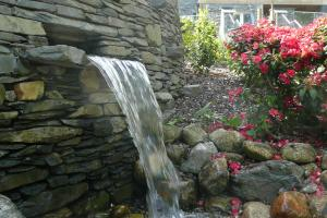 Waterfall and Rhododendrons